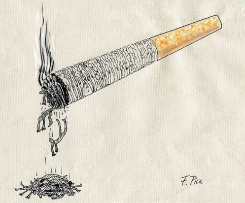 an introduction to the issue of dangers of tobacco Tobacco is the leading cause of preventable death in the united states past issues | free sample submit to search articles, art, books & videos.